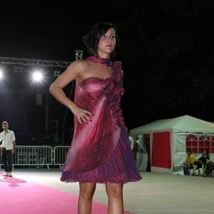 Lambrusco 2012 ven 014