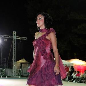 Lambrusco 2012 ven 015